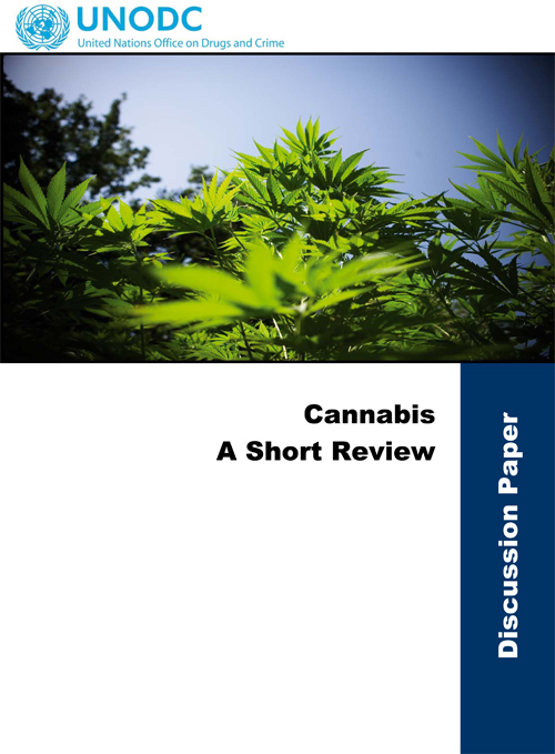 UNODC Cannabis Review